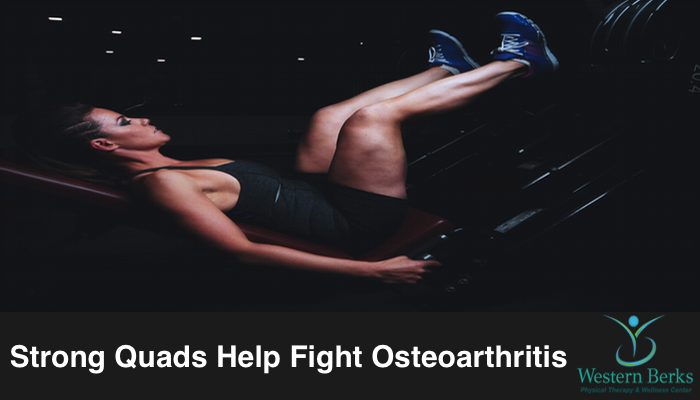 Strong Quads Help Fight Osteoarthritis - Western Berks Physical Therapy