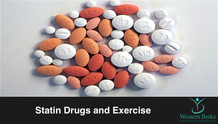 Statin Drugs and Exercise - Western Berks Physical Therapy